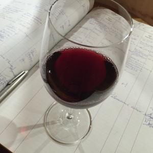Allan Scott Hounds Pinot Noir 2012